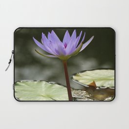 Beauty At The Pond Laptop Sleeve