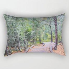 Tettegouche State Park, Minnesota 10 Rectangular Pillow