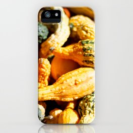 Gourds on Gourds iPhone Case