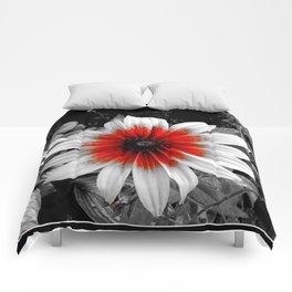 Flower | Flowers | Red Stroke Gaillardia | Red and White Flower | Nadia Bonello Comforters