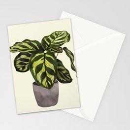 calathea botanical interior plant Stationery Cards