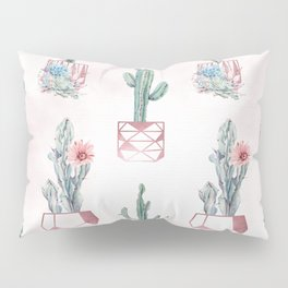 Desert Potted Cactus and Succulents Rose Gold Pink Pillow Sham