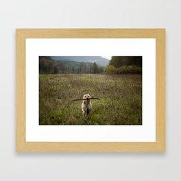 Fetching Framed Art Print