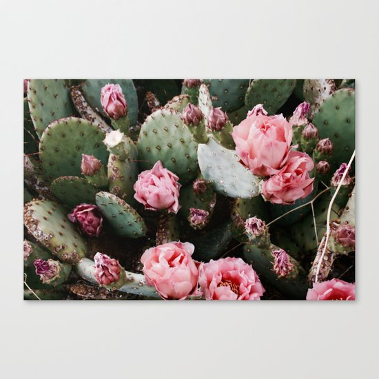 PINK CACTUS FLOWER ABSTRACT CLUSTER PATTERN Canvas Print