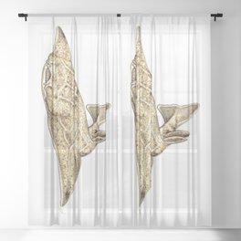Angel shark Sheer Curtain