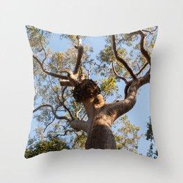 Scribbly Gum Tree, Muogamarra Reserve, Sydney Throw Pillow