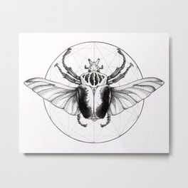 Goliath Beetle No.2 Metal Print