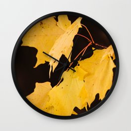 Yellow maple leaves Wall Clock