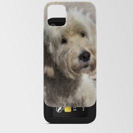 Dog Goldendoodle Golden Doodle iPhone Card Case