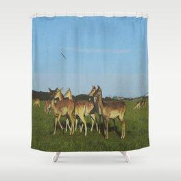 Oh Deer (Artistic/Alternative) Shower Curtain