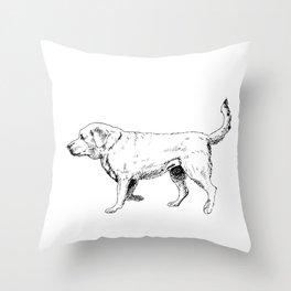 Labrador Retriever Ink Drawing Throw Pillow