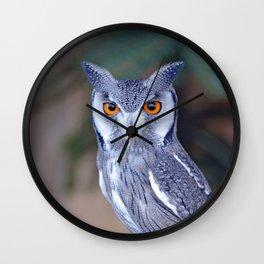 Owl_20180201_by_JAMFoto Wall Clock