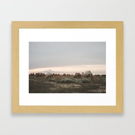 Tribe of Camels in the Kazakh desert Framed Art Print