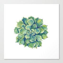 November Succulents Canvas Print
