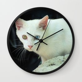 Blue And Green Eyed Cat Wall Clock