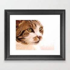 Best cat in town Framed Art Print