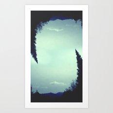 Leaning Spruce Art Print