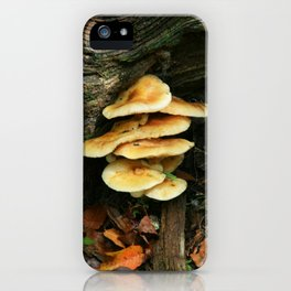 Lichen - Fungi iPhone Case