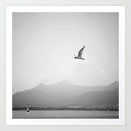 sunlit silence Art Print