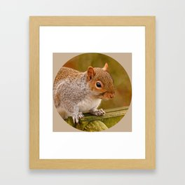 Woodland-Photos  Logo Framed Art Print