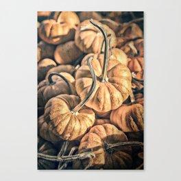 Autumn Grunge Canvas Print