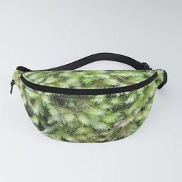 TEXTURES -- Moss on a Tree Trunk Fanny Pack