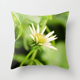 Coneflower in Bloom Throw Pillow