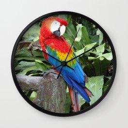 Parrot posing in Malaysia Wall Clock