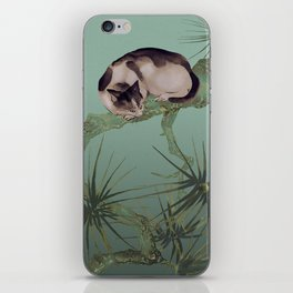 Cat In The Pines iPhone Skin