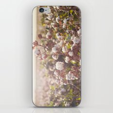 Cottonfield iPhone & iPod Skin