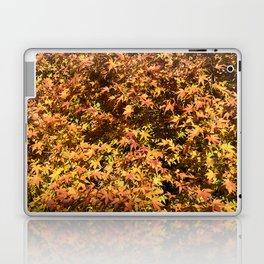 Japanese Maple Fall Leaves Laptop & iPad Skin
