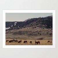 elk Art Prints featuring Elk by Al Robinson