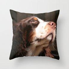 Tri Pride Throw Pillow