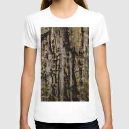 Old Wood Close up T-shirt
