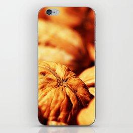 Walnuts iPhone Skin