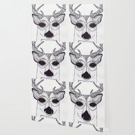 Baby Buck Wallpaper