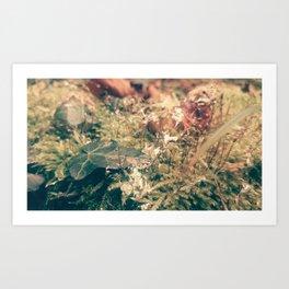 slugmoss Art Print