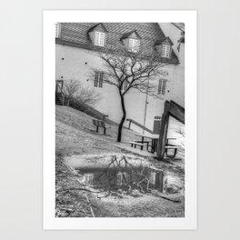 Tree Reflection Art Print