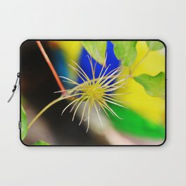 Clematis bloom is gone Laptop Sleeve