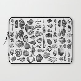 Vintage Sea Shell Drawing Black And White Laptop Sleeve