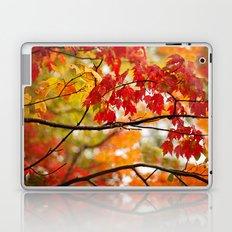 Autumn Bliss Laptop & iPad Skin