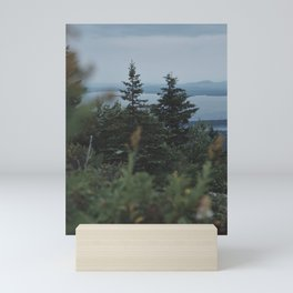 Acadia National Park Mini Art Print