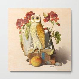 Apprentice Owl Metal Print