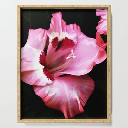 The Gladiola In Pink  Serving Tray