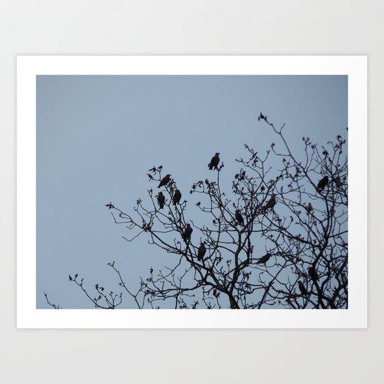 Bird Silhouettes Art Print