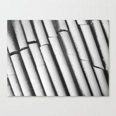 Ice. Ribs / 2012 Canvas Print
