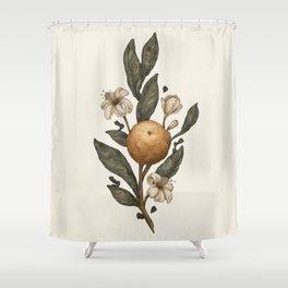 Clementine Shower Curtain