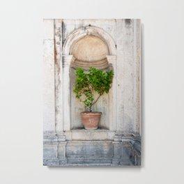 Lemon Tree in a Pot Metal Print