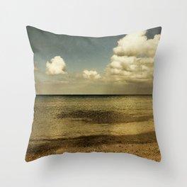 copper light Throw Pillow