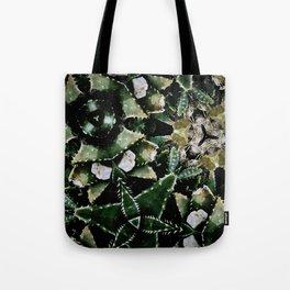 Succulents on Show No 1 Tote Bag